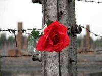 filo spianto giornata memoria fiore
